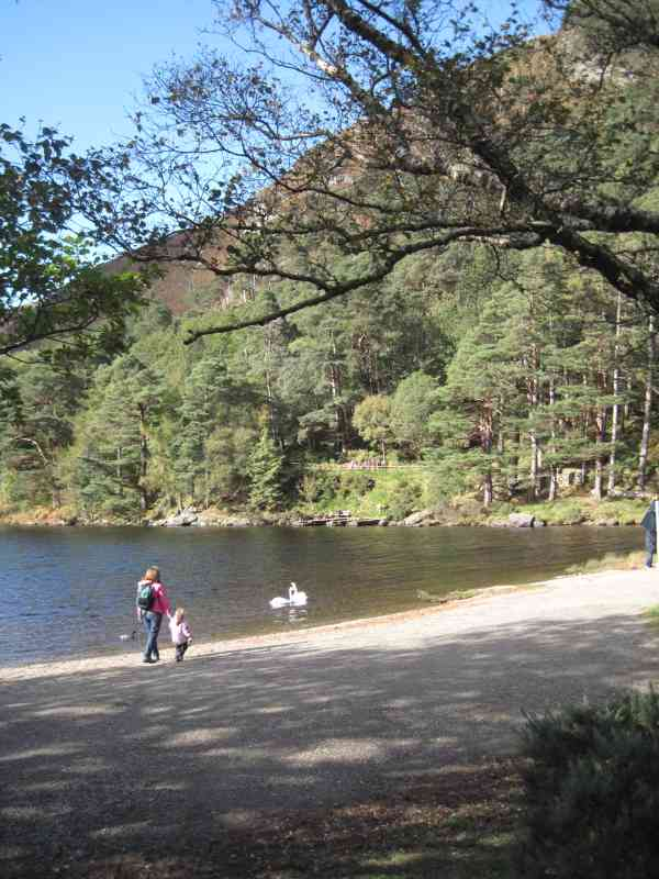 Visitors and swans at the Upper Lake of Glendalough